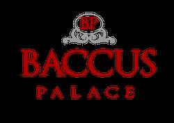 Sala Ricevimenti Baccus Palace