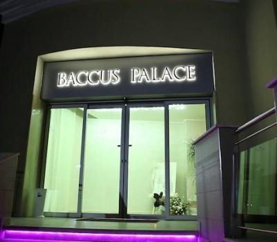 Sala congressi - Baccus Palace